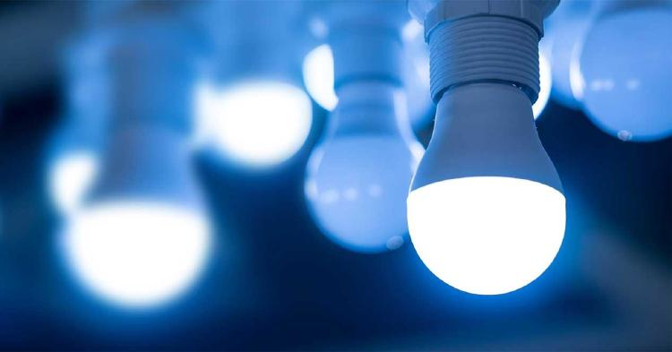 Bombillas LED.