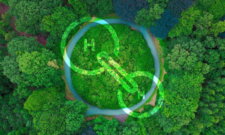 Hidrógeno verde.